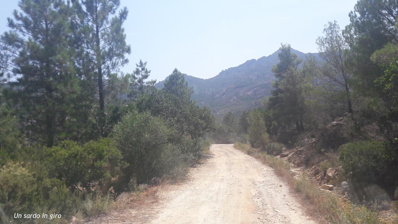 strada verso monti nieddu