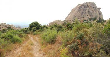 monti pulchiana