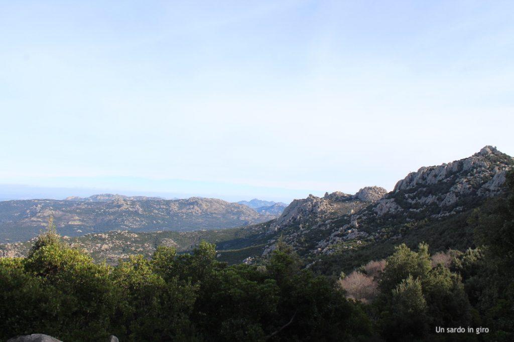 monti Limbara