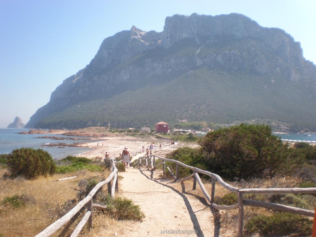 sentiero-isola-di-tavolara