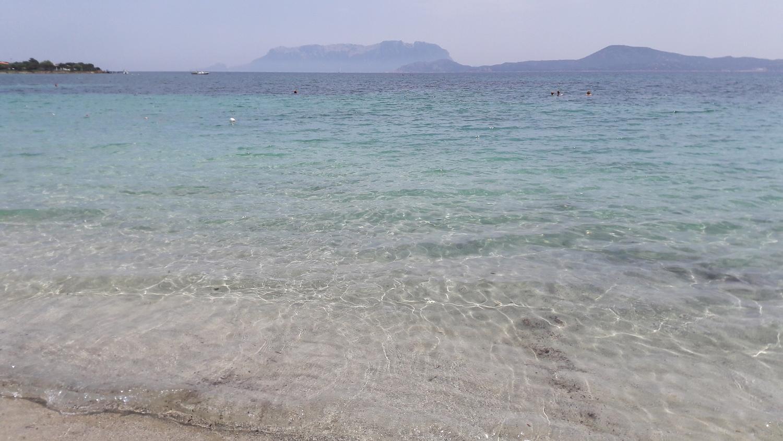 spiaggia pellicano 2