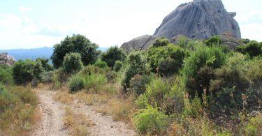 monte pulchiana