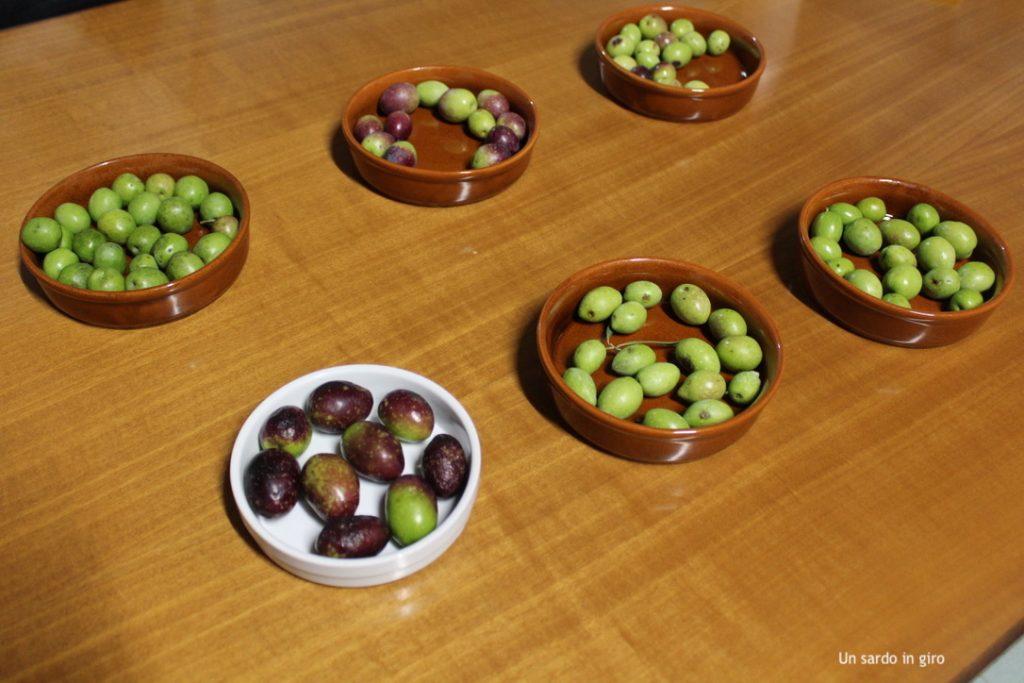 olive differenti