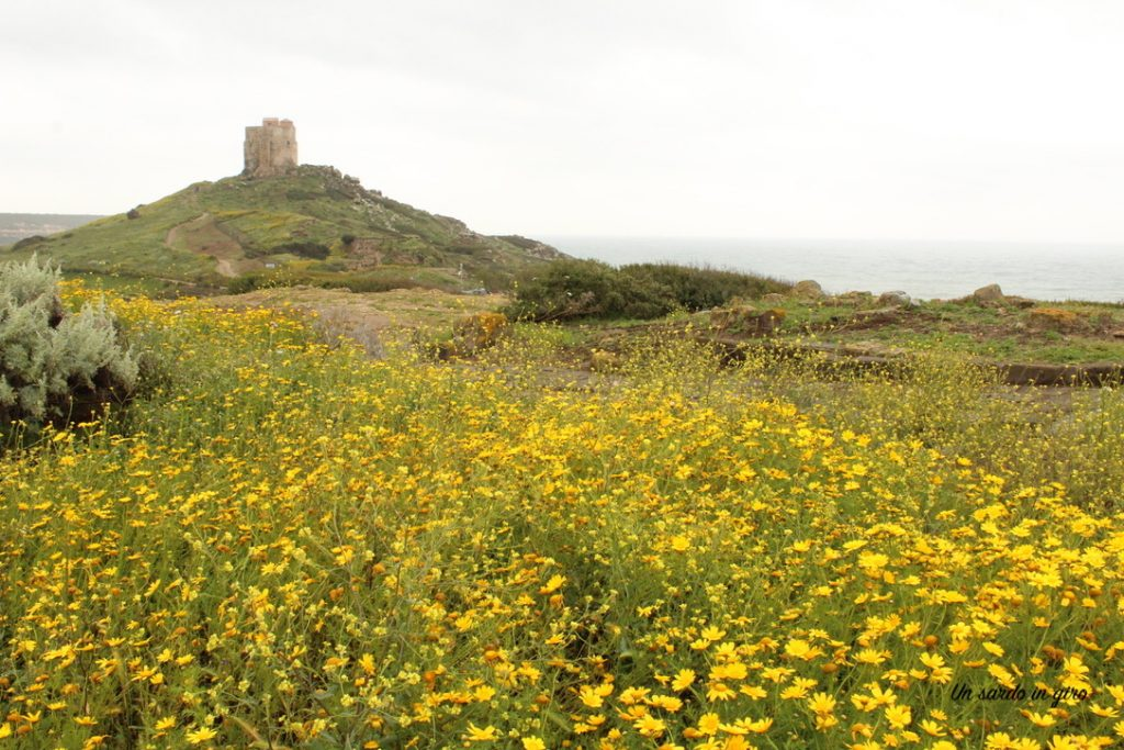 torre san giovanni