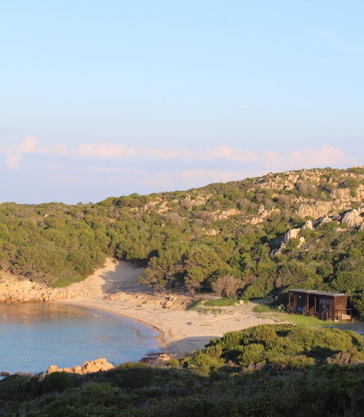 spiaggia cervo costa smeralda